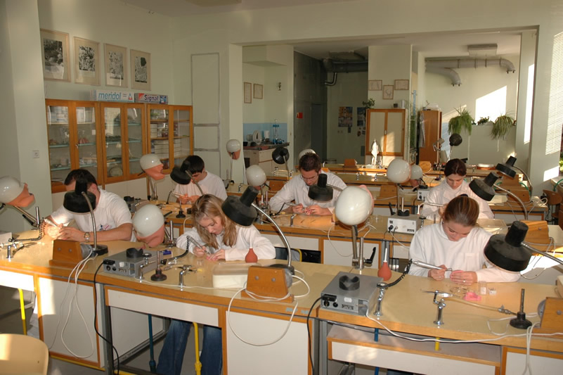 Department of dentistry - laboratory